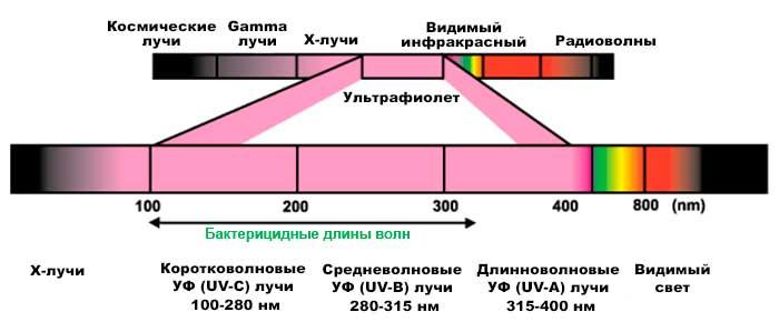 Бактерицидный ультрафиолет